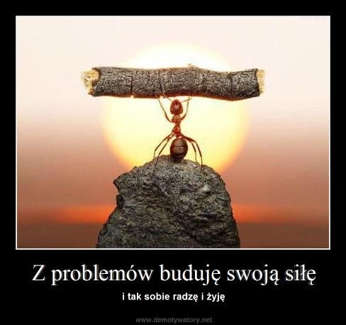 Źródło: http://demotywatory.net/