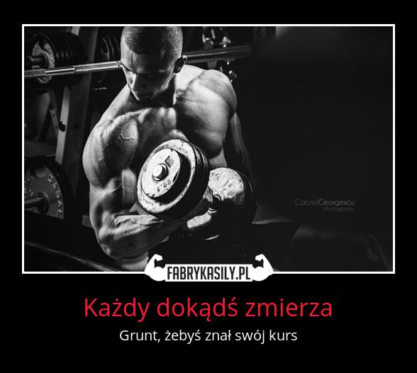Źródło: www.fabrykasily.pl